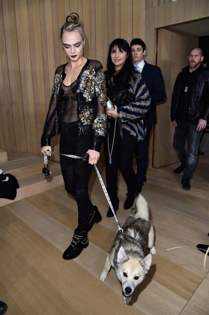 Image Result For Cara Delevingne Brought Her Dog To The Chanel Couture Show