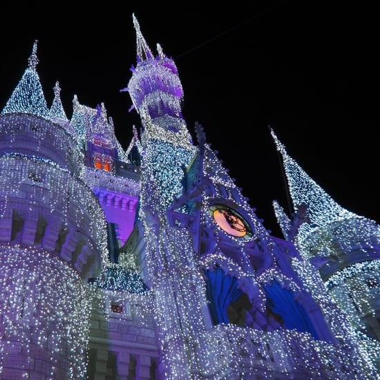 Reasons You Should Visit Disney World at Christmas
