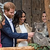 Harry and Meghan made friends with a chill koala during their Australian tour in October 2018.