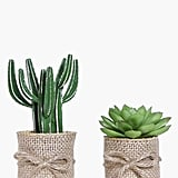 Boohoo 2 Hessian Wrap Faux Cactus & Aloe Plants