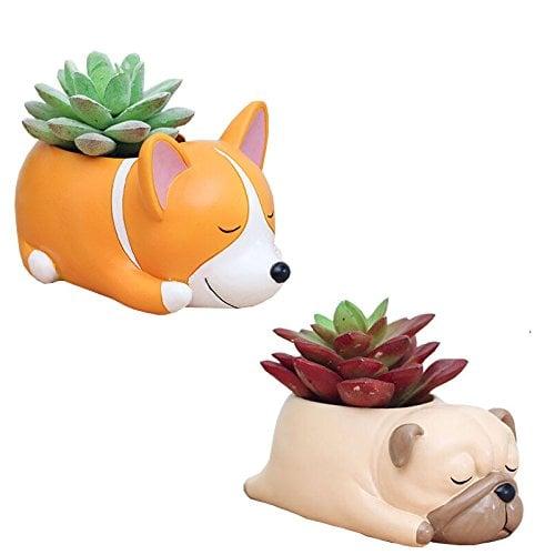 Animal-Shaped Succulent Pots