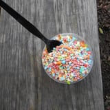 White House Press Secretary Sean Spicer Has a Twitter Feud With Dippin' Dots