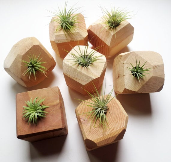 office planter. geometric wooden planter cute office plants popsugar career and finance photo 2