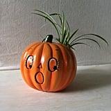 Vintage Pumpkin Planter