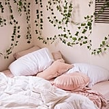 Decorative Vines Set