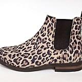 Q Dressage Leopard Print Chelsea Boots