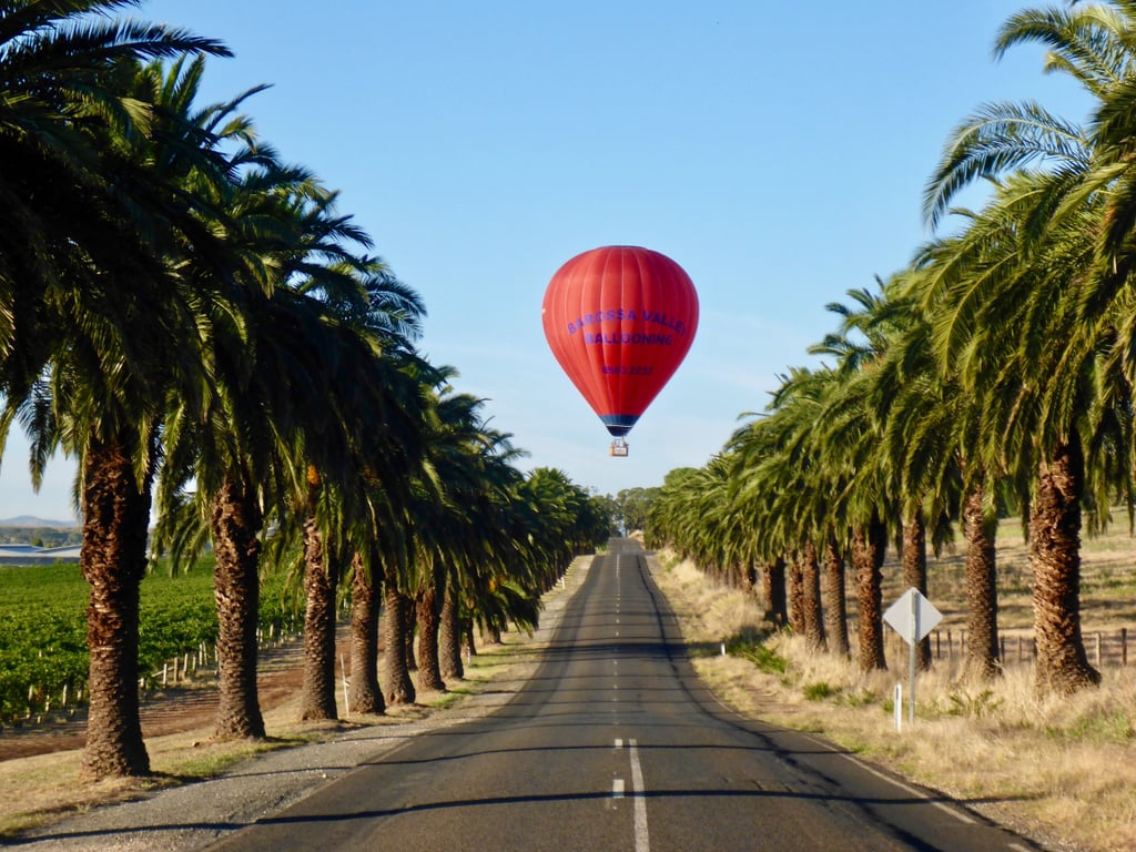 1. Hot Air Ballooning, Barossa