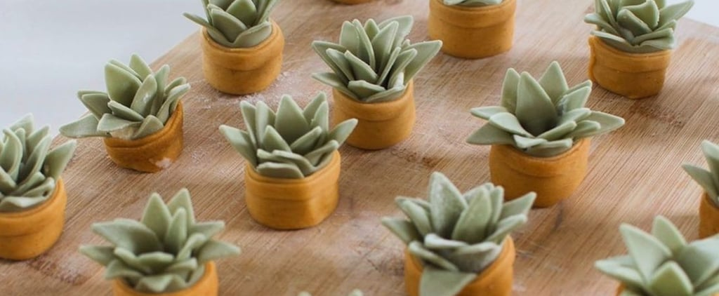 How to Make the Succulent-Shaped Ravioli From TikTok: Recipe