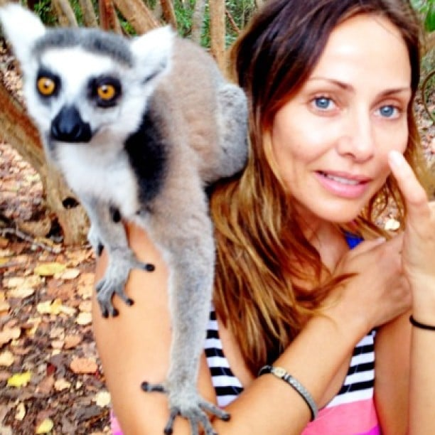 Natalie Imbruglia made a furry lemur friend. Source: Instagram user natalie_imbruglia