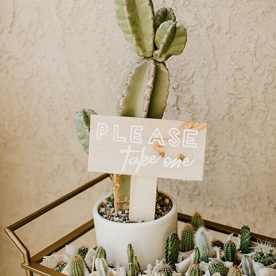 Cactus Baby Shower Ideas