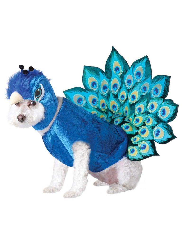 peacock | dog halloween costumes 2018 | popsugar moms photo 3