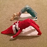 Holiday stress is getting to them, so Elf is teaching Elsa a little yoga.