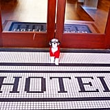 I was hosted by the Hotel on North located in Pittsfield, MA! This hotel is only two years old. It has a modern, fresh boutique vibe but still gives you the small town New England feel. It is pet friendly for a diva like me and provides complimentary doggie treats, water/food bowls, and waste bags.