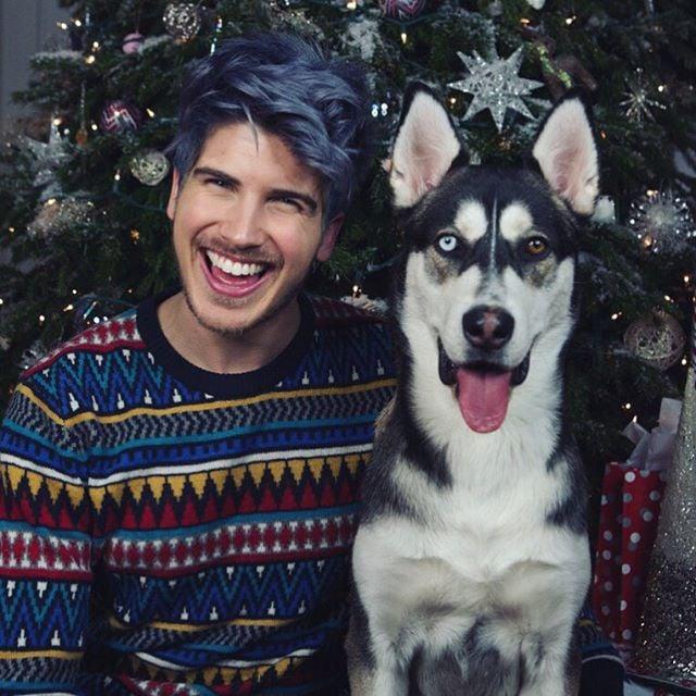 Joey Graceffa's Dog, Wolf