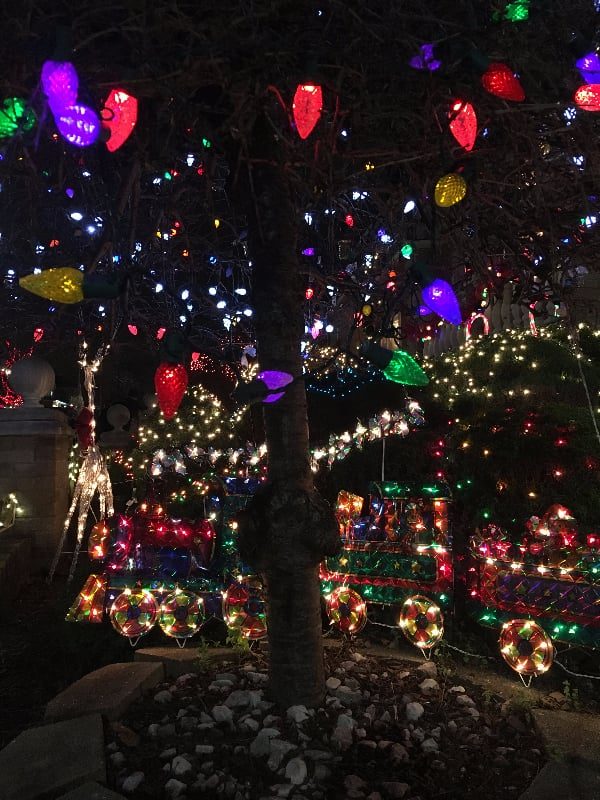 A train set lights up this tree.