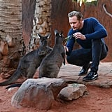 Alexander Skarsgard Playing With Zoo Animals