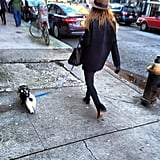 This little puppy had Ashley Benson on a leash. Source: Instagram user itsashbenzo