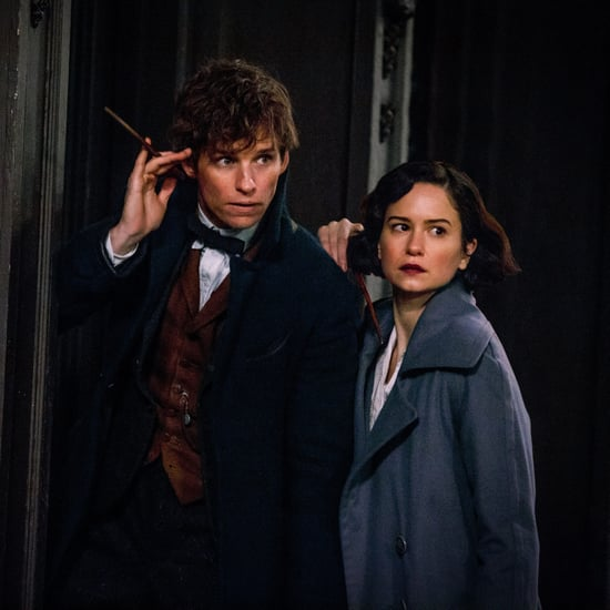 Who Narrates Fantastic Beasts and Where to Find Them?