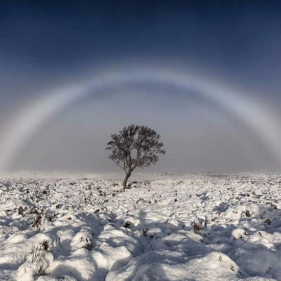 What Is a White Rainbow?
