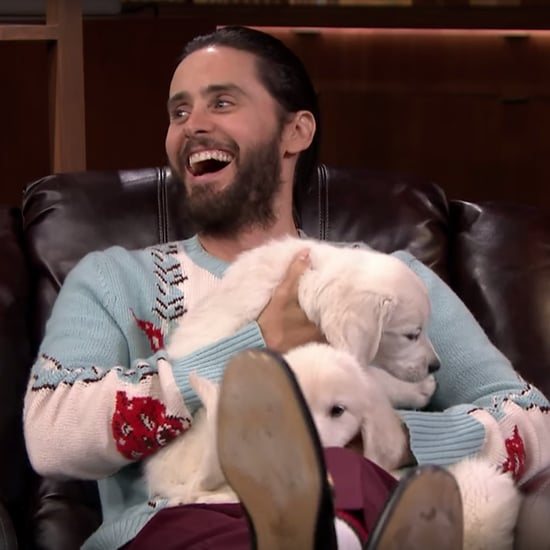 Jared Leto Pup Quiz on The Tonight Show August 2016