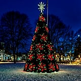 Go to Your Town's Tree Lighting Ceremony