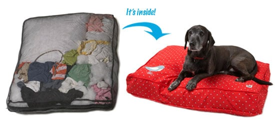 Eco Friendly Dog Beds Let You Use Your Old Blankets as Bedding