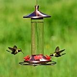 Perky-Pet Elegant Glass Copper Hummingbird Feeder