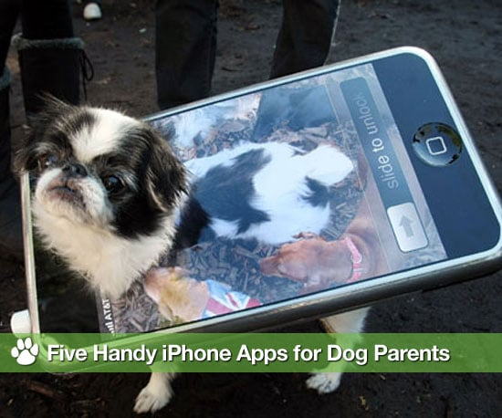 Five Handy iPhone Apps For Dog Parents