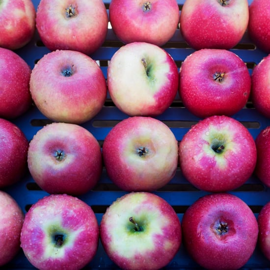 Best Apple Orchards in America