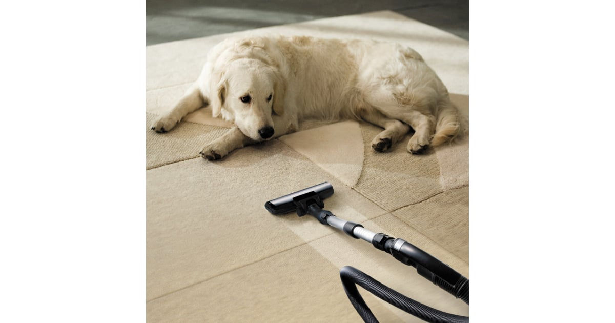 10 Powerful Pet Hair Vacuums Even On Hardwoods
