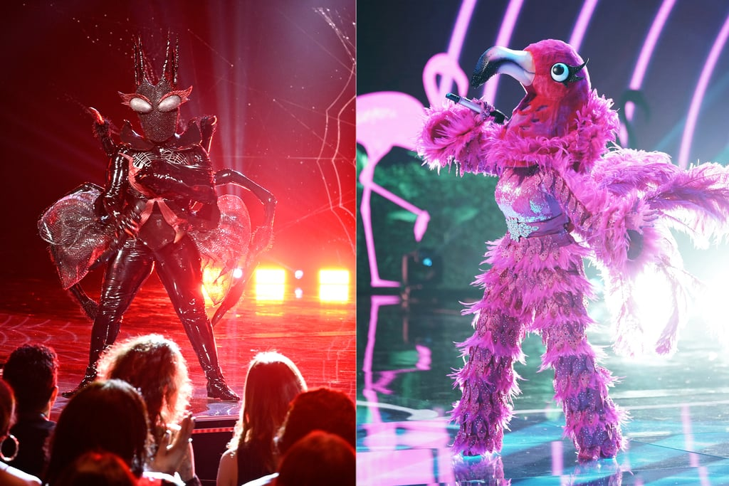 Hmm, We Suspect The Masked Singer's Flamingo and Black Widow Go WAY Back . . .