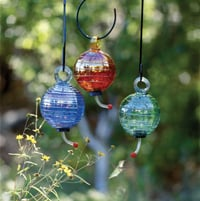 Feed the Birds: Dew Drop Feeder and Nectar