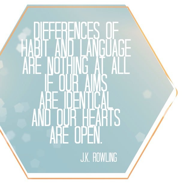 """Differences of habit and language are nothing at all if our aims are identical and our hearts are open."" — Harry Potter and the Goblet of Fire"