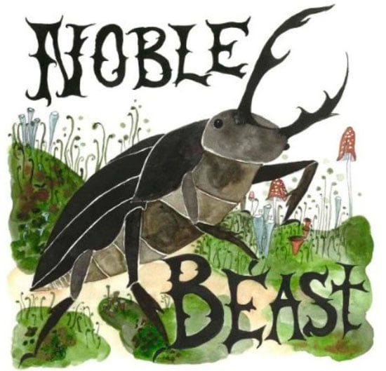 Review of Andrew Bird's Noble Beast