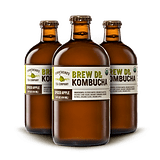 Brew Dr. Kombucha in Spiced Apple