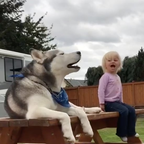 Video of Little Girl Having a Conversation With Her Dog