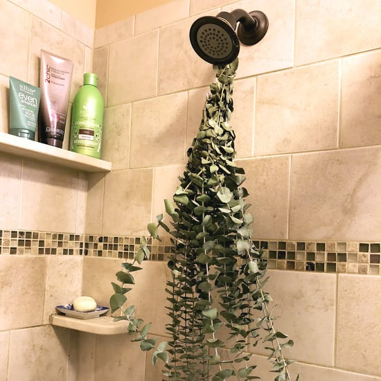 Hang Eucalyptus in the Shower