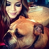 Chrissy Teigen shared a cute snap with her dog, Puddy. Source: Instagram user chrissyteigen