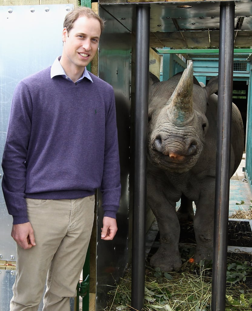 Prince William had a busy weekend with various royal duties, including the Trooping the Colour and Order of the Garter ceremonies, but two weeks ago, he was able to visit the town of Lympne, England, for a cause close to his heart. The Duke of Cambridge visited the Port Lympne Wild Animal Park on June 6 to check in on rhinoceroses that had been relocated to Britain. The project was overseen by various organizations including the Tusk Trust, of which Prince William is a patron. The three animals are being raised in captivity before being moved to Tanzania's Mkomazi National Park, part of a project that aims to increase the number of rhinos living at Mkomazi.  The next week will bring more excitement for William, as Thursday is his 30th birthday. We've kicked off the celebration of his big milestone with a look at pictures from William's childhood, including many adorable snaps of him as a youngster playing with his little brother, Prince Harry.