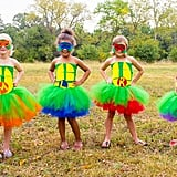 Teenage Mutant Ninja Turtle Inspired Halloween Tutu Dresses