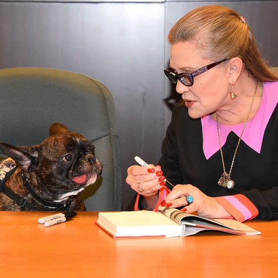 Carrie Fisher's Dog in Star Wars: The Last Jedi
