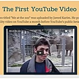 YouTube's first video was just a casual day at the zoo.