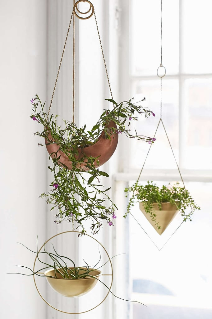 The Best Hanging Planters