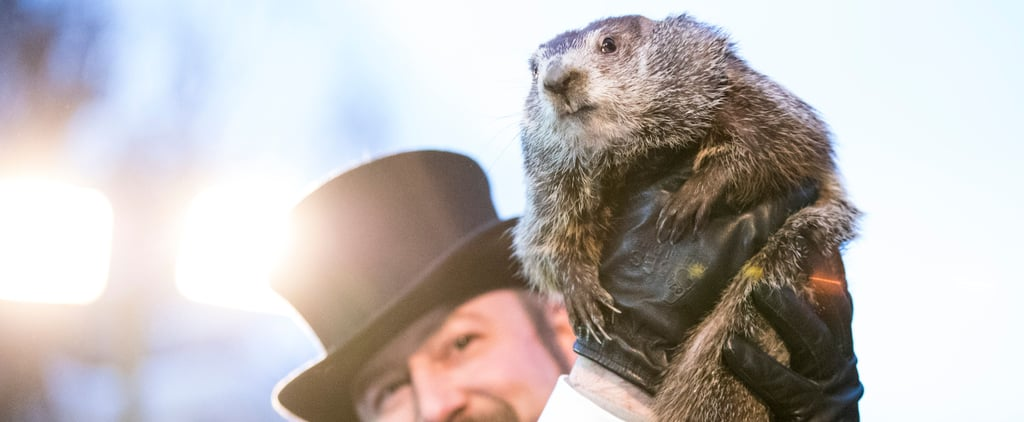 Happy Groundhog Day! Here's What Punxsutawney Phil Predicts For 2018