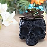 Decorative Human Skull Planter