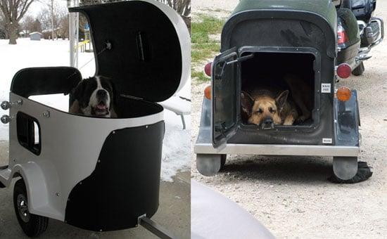 Tote a Dog With a Hog?