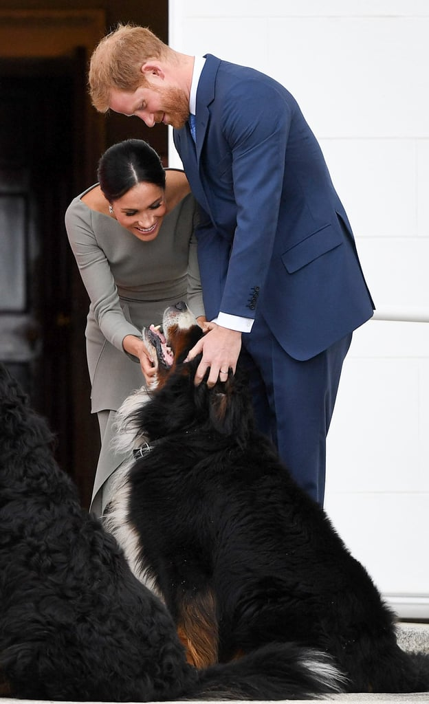 July: When They Made a Furry Friend While Visiting Irish President Michael Higgins