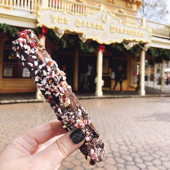 Disneyland Chocolate Churro With Pretzels and Peppermint