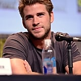 "Liam Hemsworth: ""You did not. I watched it one time."""