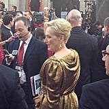 We spotted a Lanvin-clad Meryl Streep on the red carpet.
